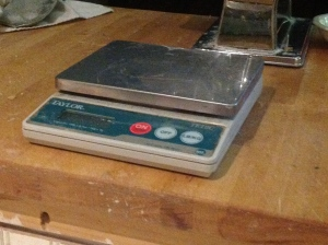 Taylor Compact Digital Scale