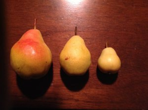 Vince's pears