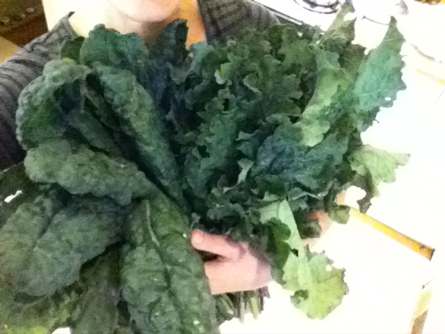 More kale than the fridge could hold!